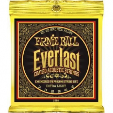 Ernie Ball P02560