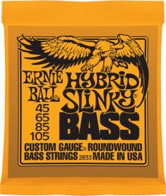 Ernie Ball P02833