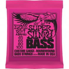 Ernie Ball P02834